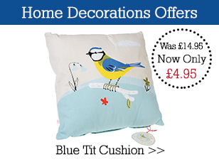 Special offer Blue Tit Cushion